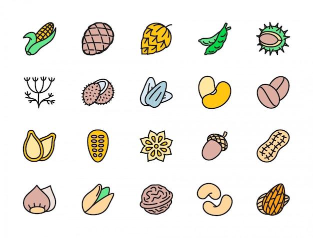 Conjunto de nozes e sementes ícones de cores planas. espiga de milho, ervilhas, endro