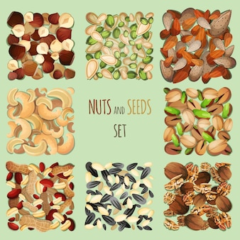 Conjunto de nozes e sementes