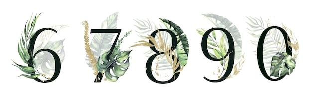 Conjunto de números florais verdes tropicais e dourados