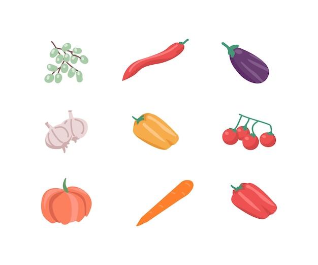 Conjunto de objetos de cor lisa vegetal