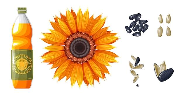 Conjunto de óleo de girassol e sementes