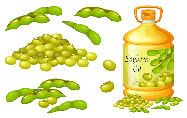 Conjunto de óleo de soja, sementes e folhas.