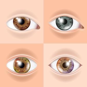 Conjunto de olhos humanos
