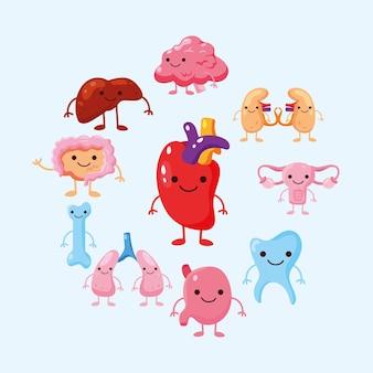 Conjunto de órgãos de desenho animado