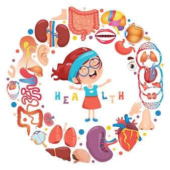 Conjunto de órgãos humanos com personagem de desenho animado