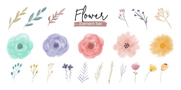 Conjunto de ornamento de elemento de flor e folhagem aquarela