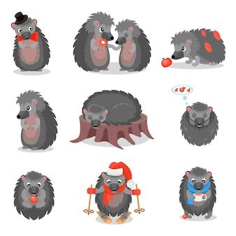 Conjunto de ouriços bonitos, animais cinzentos doces personagens de desenhos animados em diferentes situações ilustração sobre um fundo branco