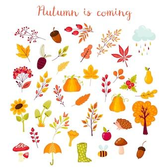 Conjunto de outono de elementos no estilo cartoon. coleção outonal de ramos, frutos, animais e cogumelos. ilustração vetorial nas cores amarela, vermelha e laranja
