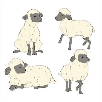 Conjunto de ovelhas com estilo de desenho ou esboço à mão no fundo branco