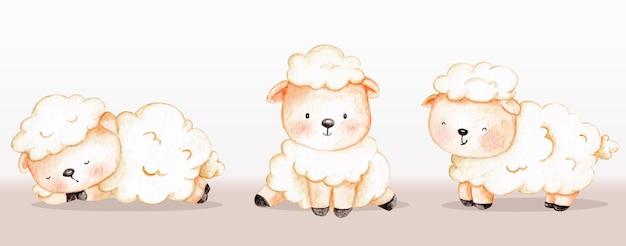 Conjunto de ovelhas de animais de fazenda bonitos em aquarela
