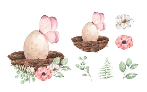Conjunto de ovo com ramo floral. ilustração em aquarela.