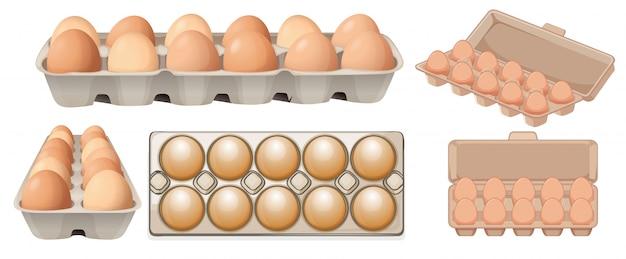 Conjunto de ovo em diferentes ângulos
