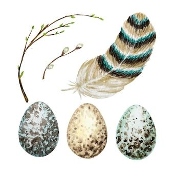 Conjunto de ovos de páscoa aquarela mão desenhada, pássaro pena brilhante, galho de árvore de salgueiro com folhas verdes.