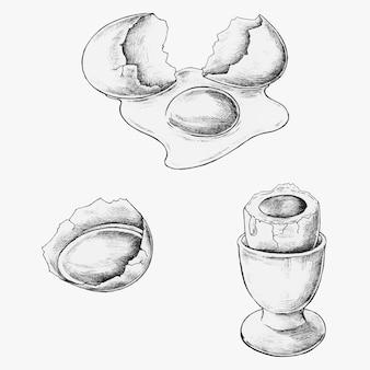 Conjunto de ovos desenhados à mão