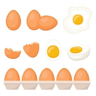 Conjunto de ovos frescos, cozidos e fritos, ilustração vetorial