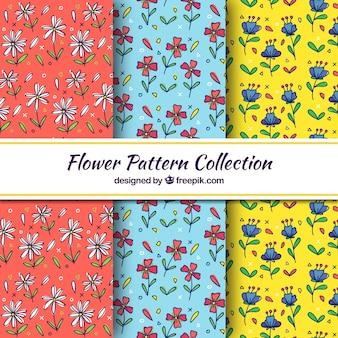 Conjunto de padrão de flor desenhada de mão