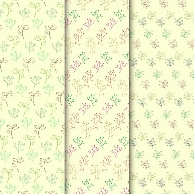 Conjunto de padrão de ramo simples doodle