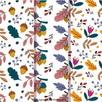 Conjunto de padrões bonitos de folhas