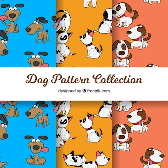 Conjunto de padrões de cães