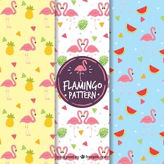 Conjunto de padrões de flamingos com frutas e plantas