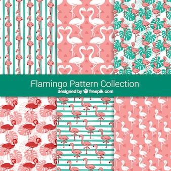 Conjunto de padrões de flamingos com plantas