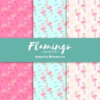 Conjunto de padrões de flamingos na mão desenhada estilo