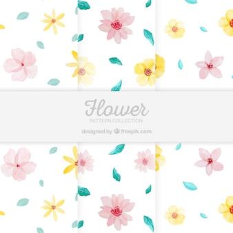 Conjunto de padrões de flores coloridas