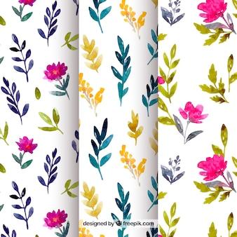 Conjunto de padrões de flores em estilo aquarela