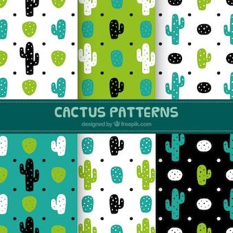 Conjunto de padrões decorativos de cactos desenhados à mão