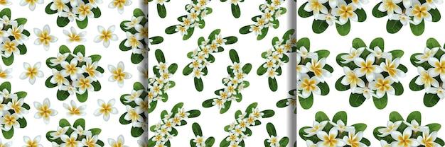 Conjunto de padrões sem emenda de flores tropicais e folhas tropic floralbackground para estampas têxteis