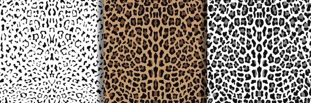 Conjunto de padrões sem emenda de leopardo para estampas têxteis
