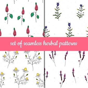 Conjunto de padrões sem emenda de vetores. ervas e plantas.