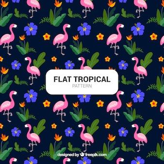 Conjunto de padrões tropicais com flamingos em estilo simples