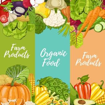 Conjunto de panfletos de comida de fazenda orgânica