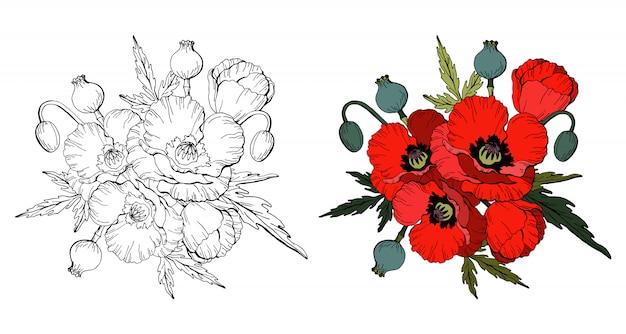 Conjunto de papoilas vermelhas e cópia em preto e branco
