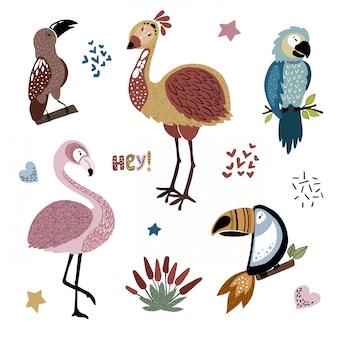 Conjunto de pássaros africanos dos desenhos animados com plantas