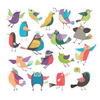 Conjunto de pássaros de desenho animado bonito