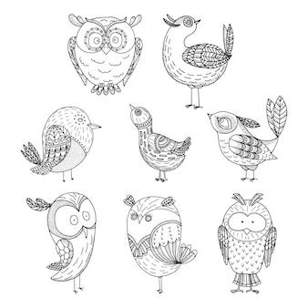 Conjunto de pássaros doodle