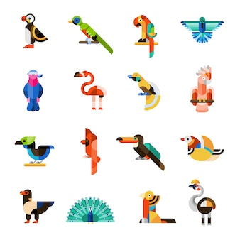 Conjunto de pássaros exóticos