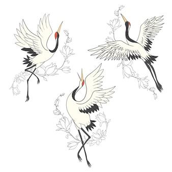 Conjunto de pássaros guindaste. cegonha-branca. isolado