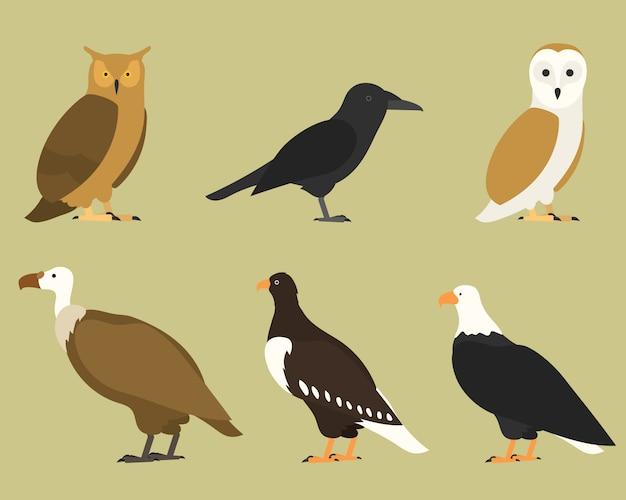 Conjunto de pássaros, no fundo. tropical e doméstico diferente, estilo cartoon simples para logotipos.