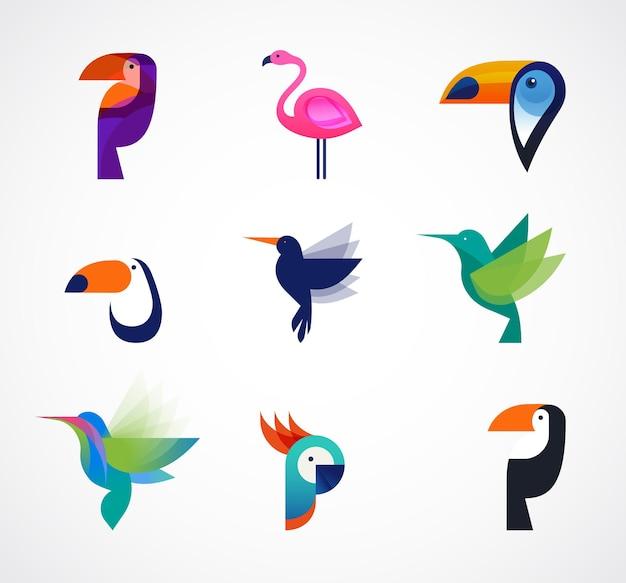 Conjunto de pássaros tropicais de ícones vetoriais
