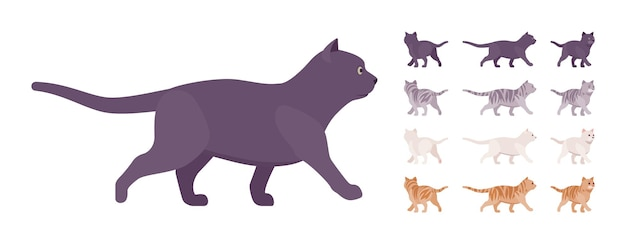 Conjunto de passeio de gato de pedigree listrado branco, preto, laranja, cinza. gatinho ativo e saudável com pelo bonito, animal de estimação engraçado e fofo, companheiro lúdico em casa. vistas diferentes da ilustração vetorial de estilo simples dos desenhos animados