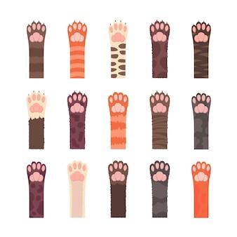 Conjunto de patas fofas de gatos multicoloridas isoladas em branco