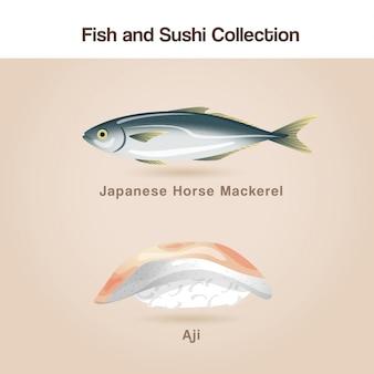 Conjunto de peixe e sushi