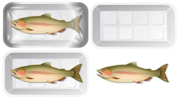 Conjunto de peixe na embalagem
