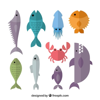Conjunto de peixes coloridos em estilo simples