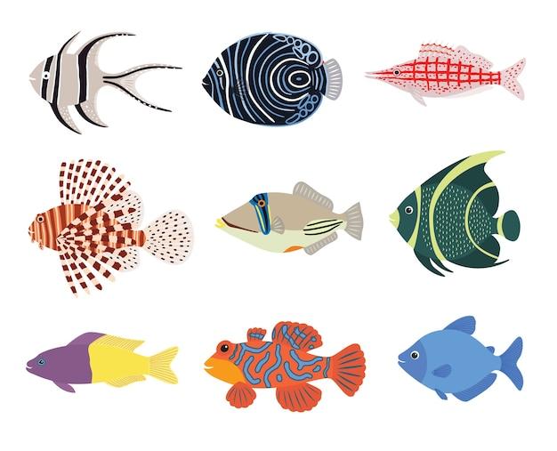 Conjunto de peixes coloridos exóticos de aquário marinho tropical
