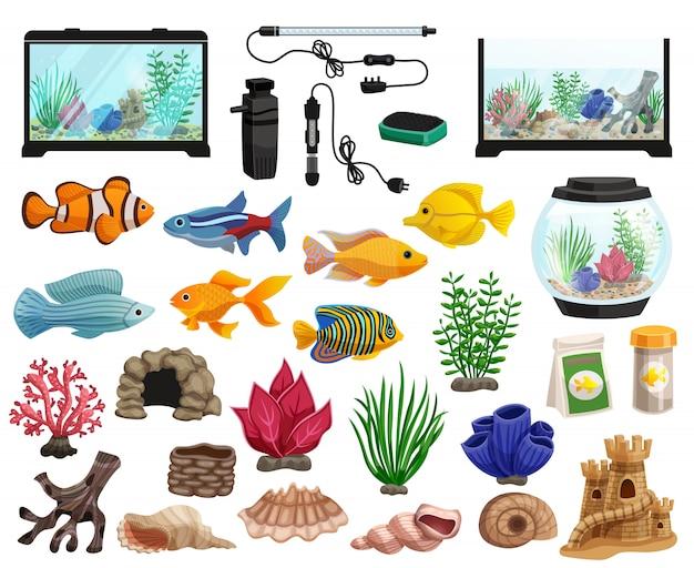 Conjunto de peixes de aquário e aquário