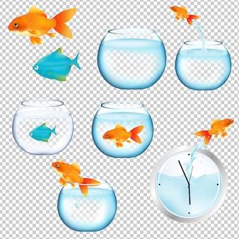 Conjunto de peixes e aquários